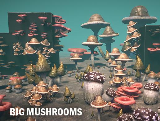 Big mushrooms