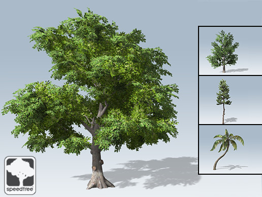 Free SpeedTrees Package - Asset Store