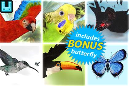 Bird Flock Bundle 2
