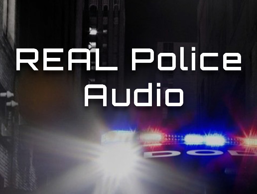 Real Police Audio