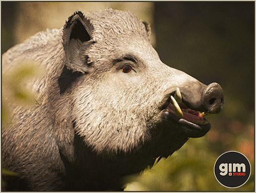 Animalia - Wild Boar M