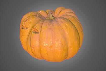 Pumpkin PBR Game Asset