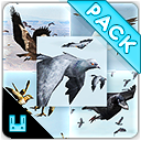 Bird Flock Bundle