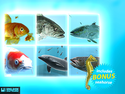 Fish School Bundle