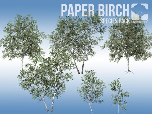 Paper Birch Species Pack (v8)