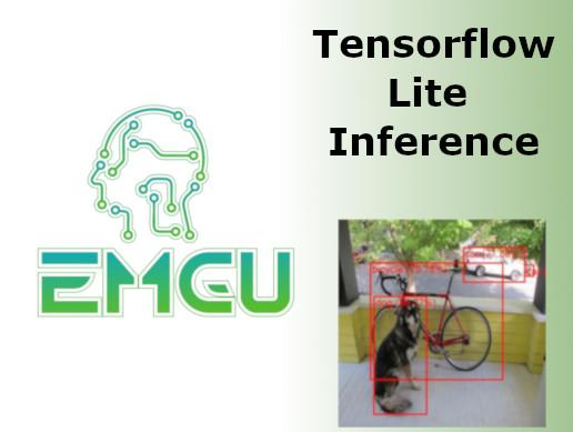 Emgu TF Lite v1 x - Asset Store