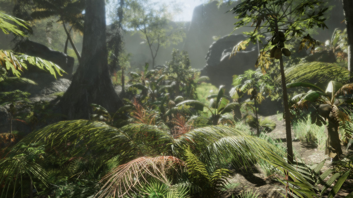 Tropical Forest Pack - Asset Store