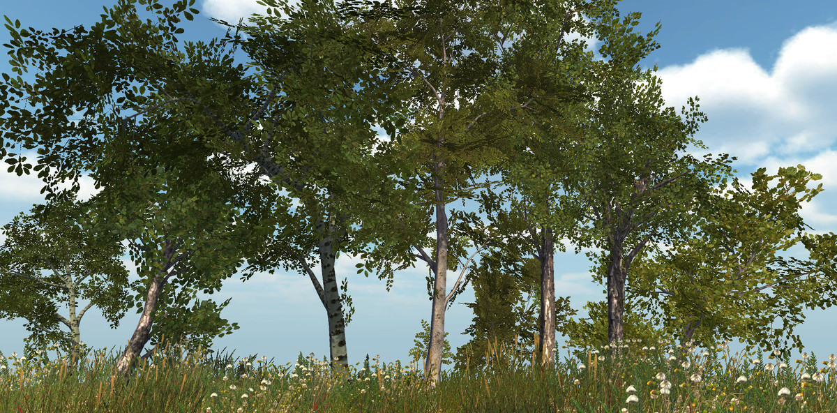 Realistic Tree Pack - Asset Store
