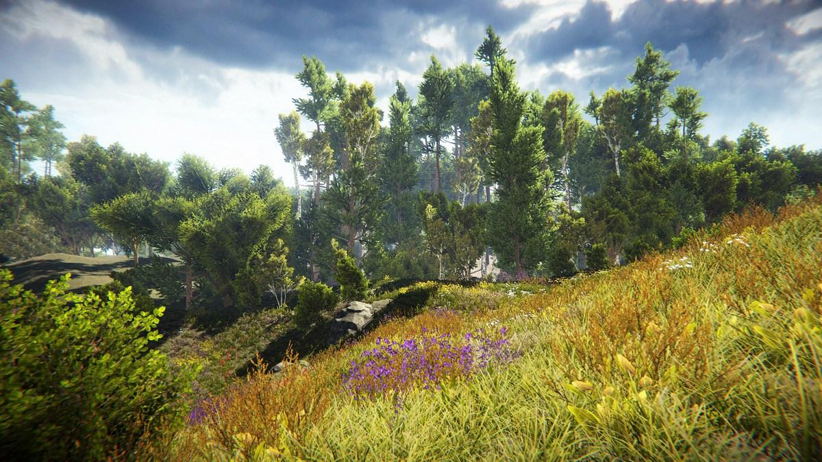 Unity真实自然环境场景包 Realistic Nature Environment v1.4-3