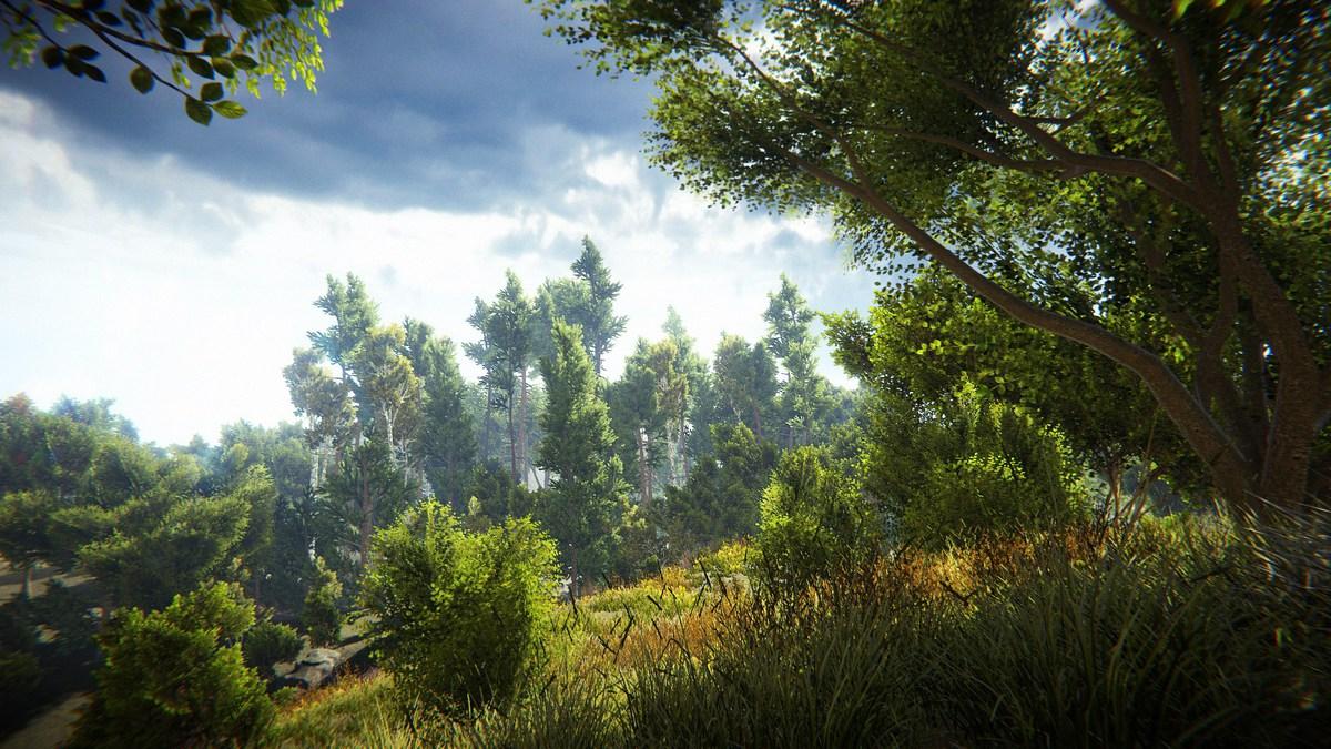 Unity真实自然环境场景包 Realistic Nature Environment v1.4-2