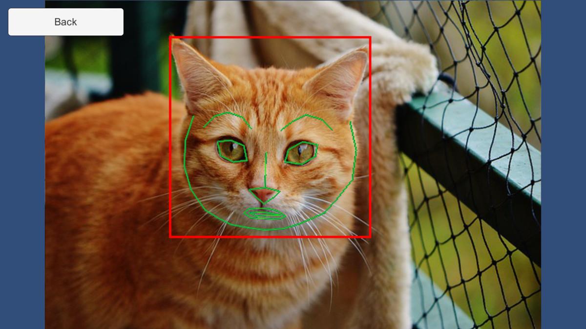82c9de14 94ee 45a6 a0a8 3c717d2e076b scaled - Dlib FaceLandmark Detector v1.2.6 - unity人脸检测器